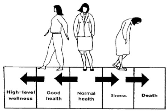 an analysis of health and illness Symbolic interactionist analysis of health overview the origins of medical sociology an interest emerged in the social experience of health, illness, and disease studies began to focus on the perspectives of patients.