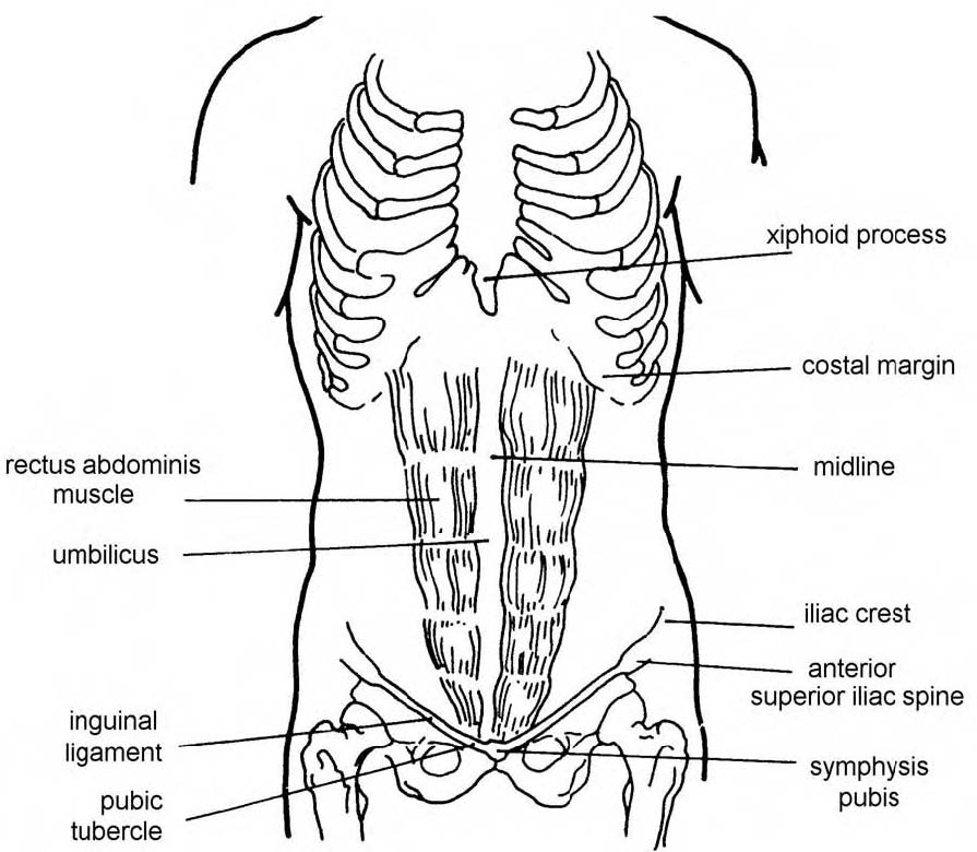 Abdomen Sites: Images 06. Digestive System