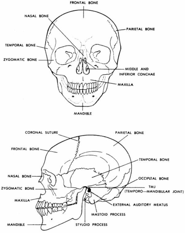 Basic X-ray Machine Operator Study Guide: Amazon.com: Books